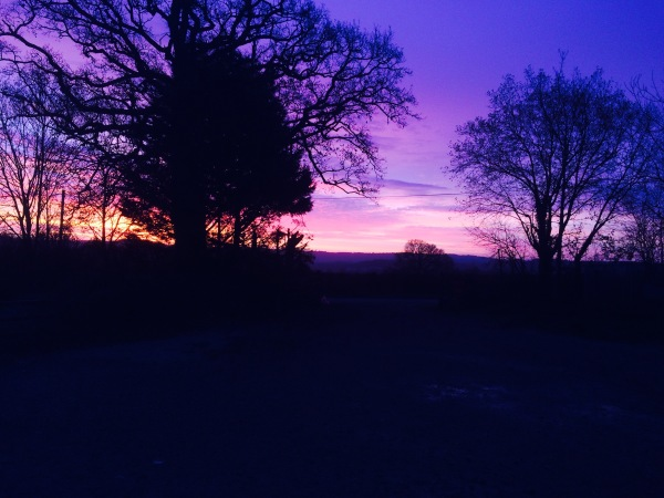 Monmouthshire Dawn